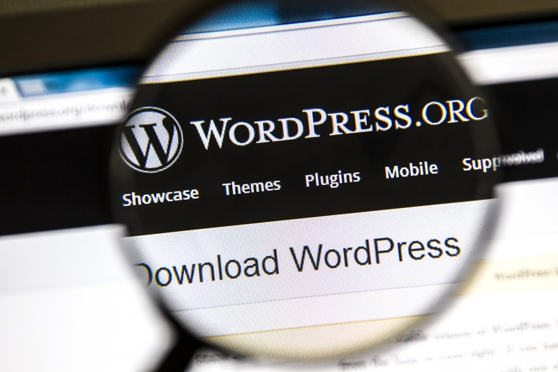 9362356-wordpress-website
